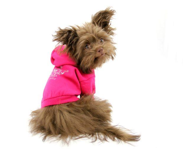 Savannah_pink-hoodie-1024x851